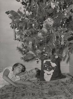 Sleeping under the Tree   Australia 1950.