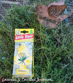 Use vanilla car fresheners purchased at the dollar store to repell flies....Flies Hate Vanilla! | Community Chickens