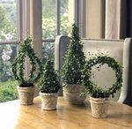 How to Create a Living Wreath Topiary Plants, Topiary Garden, Boxwood Topiary, Ivy Plants, Topiary Trees, Indoor Garden, Garden Art, Indoor Plants, Outdoor Gardens