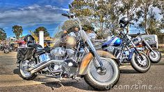Classic American made Harley Davidson motorcycles on display at a car and bike…