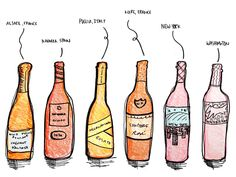 Top Champagne Brands, Best Wine Decanter, Red Wine Cabernet, Wine Folly, Need Wine, Different Wines, Types Of Wine, Sauvignon Blanc, Poster