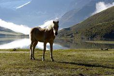 Am Rifflsee im Pitztal: Wandern in den Tiroler Alpen #Bergsee #DachTirols