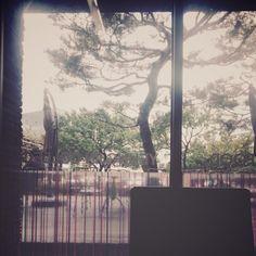 학교 안 카페에서 찍는 사진