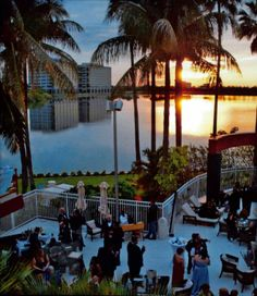Cocktail Hour Poolside at the Sofitel Miami Hotel Miami Wedding Venues, Bridezilla, Fort Lauderdale, Receptions, Real Weddings, Knot, Cocktails, Wedding Day, Florida