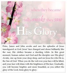 Bible Devotional - Grow