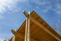 Double timber columns supporting glulam beams