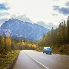 We're on the road to winter! Who's coming before the snow falls?  Photo by @_wandxrlust_ #MyJasper