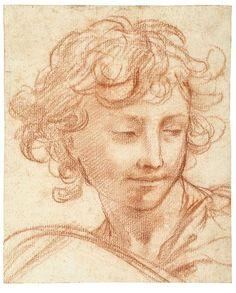 Pietro da Cortona, Study of the Head of a Youth