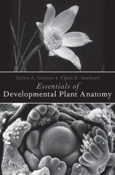Developmental biology ninth edition developmental biology essentials of developmental plant anatomy taylor a steeves and vipen k sawhney oxford university press 2017 essentials of developmental plant anatomy fandeluxe Image collections