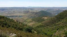 Vale do Douro a caminho de Barca de Alva, Agosto de 2014