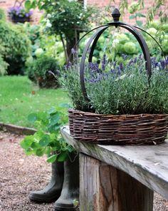 !*** Garten,Blumen,Deko ***!