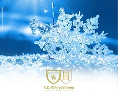 """Check out new work on my @Behance portfolio: """"Copertina e Render di Natale ChievoVerona 2017/018"""" http://be.net/gallery/61722875/Copertina-e-Render-di-Natale-ChievoVerona-2017018"""