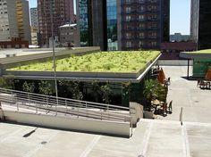 Projeto Boa Praça: Telhados Verdes
