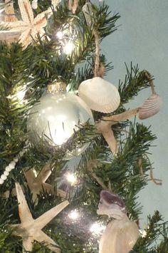 Coastal Christmas Tree - hang shells by twine