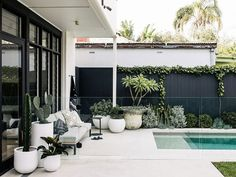 """The Balcony Garden on Instagram: """"There's just so much to love about this Sydney backyard created by @harrisonslandscaping 😍 and talk about a collection of pots! We spy a…"""""""