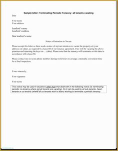 Example Of Application Letter For Job Vacancy Example Of