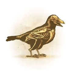 Drawlloween 2015 - Day 11 - Raven
