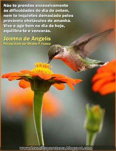 Divaldo Franco - Joanna de Angelis