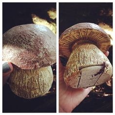 Here's a cool fake mushroom #geocache. (pinned from websta to Creative Geocache Containers - pinterest.com/islandbuttons/creative-geocache-containers/)