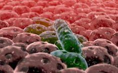 Attention : les infections fongiques peuvent causer le cancer !<br>https://www.astucesnaturelles.net/attention-infections-fongiques-peuvent-causer-cancer/