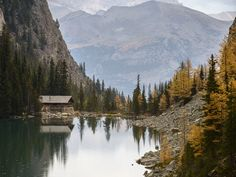 Lake Agnes Tea House, Lake Louise, AlbertaSubmitted by Jeff. Nature Adventure, Life Is An Adventure, Lake Agnes Tea House, Cabins And Cottages, Future Travel, Places To Go, World, Instagram, Autumn