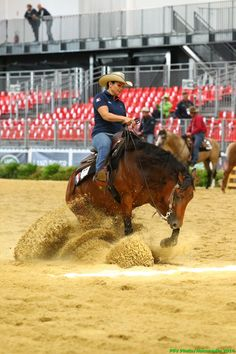 Reining - Anne Sophie GUERREIRO - August 25th - Copyright : PSV Photo Reining Horses, Dressage, Western Riding, American Quarter Horse, Pictures Of People, Equine Photography, Show Horses, Rodeo, Cowboys