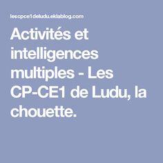 Activités et intelligences multiples - Les CP-CE1 de Ludu, la chouette.