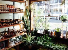 Sunny mornings are special in this little front nook of the shop.
