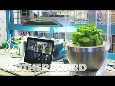 Meet the Gardening Robot that Could Grow Fresh Food for Astronauts | Motherboard