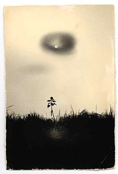Masao YAMAMOTO, Japan sumie brushpainting Ink and Wash Painting Chinese Art and Japanese Art
