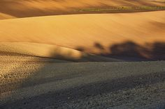 Autumn light and shadow in countryside by Pavel Rezac Autumn Lights, Light And Shadow, Tuscany, Countryside, Fields, Sunset, Wall Art, Outdoor, Outdoors