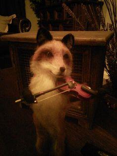 My needle felt fox playing his fiddle