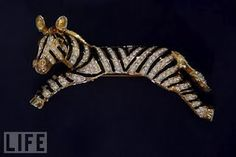 This was from an assortment of zebras for meeting with Nelson Mandela. This particular zebra laid over your shoulder.