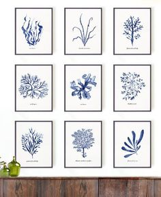 My Top 8 Etsy Art Print Shops, Gallerie B blog
