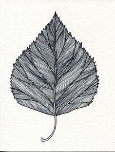 Items similar to Birch Leaf Print of original pen and Ink drawing - black or green on Etsy Leaf Art, Ink Art, Drawings, Doodle Art, Ink Pen Drawings, Ink Drawing, Flower Drawing, Art, Zentangle Patterns