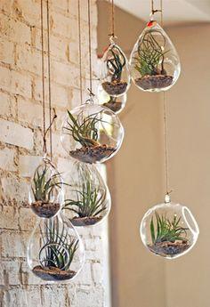 * Vloer- en muurbekleding: Hangende plantjes zeer mooi en decoratief!! ♥