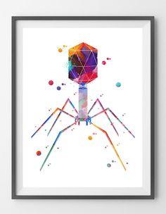 Bacteriophage Art Print Science Art Watercolor Painting Print