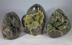 Set of 3 Premium Hollow Septarian Nodule (3-D) - Freeform Sculptures from Utah