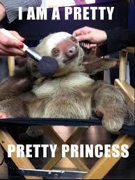 sloth meme - Google Search
