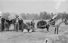 Impact of the horse: Travel; The children of Stump Horn (Cheyenne) using a horse travois for transportation, 1889. Christian Barthelmess. Courtesy National Anthropological Archive, Smithsonian Institution.