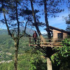 232 Beğenme, 9 Yorum - Instagram'da Tree Houses (@tree.houses)