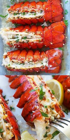 Lobster Tails Garlic Butter Lobster Tail - crazy delicious lobster in garlic herb and lemon butter. This lobster tail recipe is so delicious you want it for dinner every day Salmon Recipes, Fish Recipes, Healthy Recipes, Indian Recipes, Chicken Recipes, Quick Recipes, Healthy Chicken, Appetizer Recipes, Bread Recipes