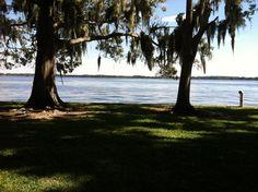 Lake Tarpon, Tarpon Springs, Florida