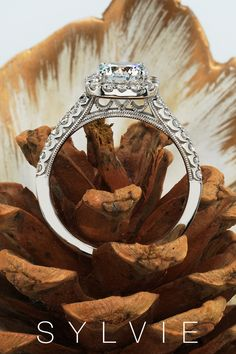This unique halo engagement ring features a 1 carat round center in our signature cushion halo with a unique milgrain detailed profile for a total weight of .48 carats. Halo Engagement Rings. SYLVIE 1 Carat Engagement Rings, Double Halo Engagement Ring, Cushion Cut Engagement Ring, Engagement Ring Styles, Designer Engagement Rings, Cushion Halo, Thing 1, Filigree Design, Classic Gold