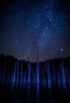 Night Meeting Photo by Mitsuhiko Kamada -- National Geographic Your Shot