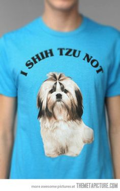 funny-shirt-shih-tzu-dog @Jordan Bromley Bromley Bromley Bromley Genoe you need this   Awe I should make a t shirt for the girls with  prince Chulo  They love their dogs