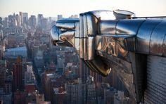 Chrysler Building, NYC, New York  One of the gargoyles, surveying the city.