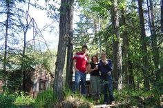 HI-Maligne Canyon Wilderness Hostel in Jasper National Park, AB Jasper National Park, National Parks, Hostel, Dream Vacations, Wilderness, Plants, Travel, Viajes, Destinations