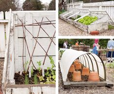 Cold frames & cloches
