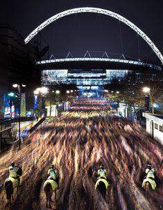Police Horses at Wembley